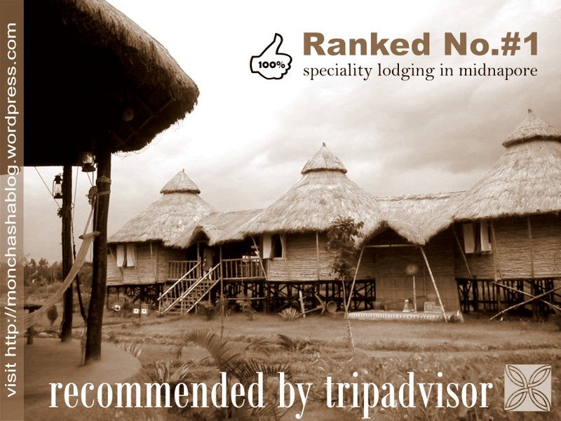 Ranked #1 by tripadvisor