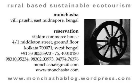 Mon Chasha :: Business Card