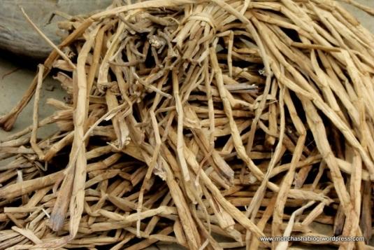 Dry Hyacinth Stems.