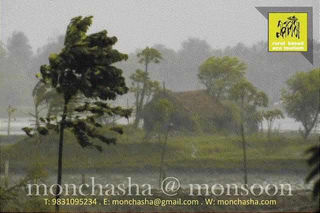 Monsoon @ Monchasha